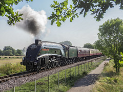 60009 (Geoff Griffiths Doncaster) Tags: 60009 castor nene valley railway steam engine train nvr a4