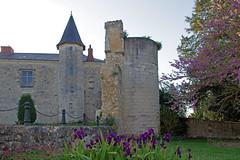 Sainte-Maure-de-Touraine (Indre-et-Loire) (sybarite48) Tags: saintemauredetouraine indreetloire france château castle 城堡 قلعة schloss castillo κάστρο castello 城 kasteel zamek castelo замок kale