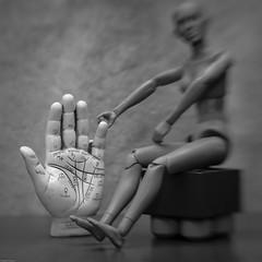 Palmistry Hand (N.the.Kudzu) Tags: tabletop stilllife palmistry hand plastic mannequin bw canondslr lensbabysol45 lightroom