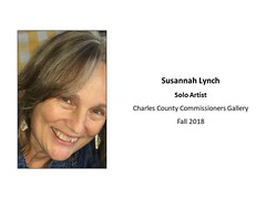 """Susannah Lynch Solo at CC Commissioners Gallery • <a style=""""font-size:0.8em;"""" href=""""https://www.flickr.com/photos/124378531@N04/42994018950/"""" target=""""_blank"""">View on Flickr</a>"""
