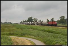 DB Cargo 6413, Waterhuizen (J. Bakker) Tags: db dbc cargo 6400 6413 63616 waterhuizen nederland