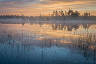 Aamu-usvat Tiilikassa - Foggy morning at sunrise in Tiilikka National Park.
