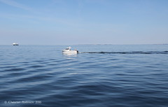 ... Ploughing the Waves ... (ChristianofDenmark) Tags: christianofdenmark copenhagen denmark summer water hot boat