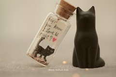 Hey, you know I love you, right? Tiny message in a bottle,Miniatures,Personalised,Valentine Card,Gift for her/him,Girlfriend gift, birthday card, holiday card and funny card ideas (charles fukuyama) Tags: blackcat cat kitty kitten pet handmadecard custommade unique cute art holidaycard homedecor deskdecor glitter lovecard sweet greetingscard paper seasonalcard partygift personalizedgift longdistancegift kikuikestudio tiny anniversarycard