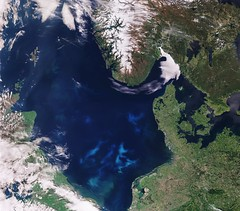 North Sea bloom (europeanspaceagency) Tags: esa europeanspaceagency space universe cosmos spacescience science spacetechnology tech technology earthfromspace observingtheearth earthobservation earthexplorer satelliteimage copernicus sentinel sentinel3a sentinel3 algabloom northsea bloom englishchannel northernisles orkney shetland norway