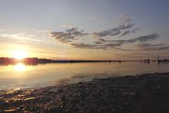Blakeney Point (_ _steven.kemp_ _) Tags: blakeney point norfolk water sea coast sunset golden hour
