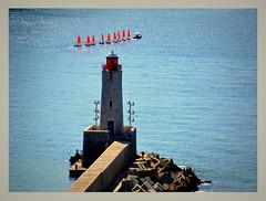 rouges, les petits canards... (Save planet Earth !) Tags: bateau mer phare port france nice amcc nikon sea