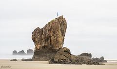 El Caballar (arribamarcos) Tags: elcaballar playadelaguilar murosdelnalon principadodeasturias españa roca bruma largaexposición haidand1000