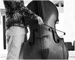 """Musicien en chemise à fleur au salon des luthiers, festival """"le son continu"""", été 2018 ([JBR]) Tags: musique musicien music musician violoncelle instrument noir negro black grey gris blanc blanco white mono monochrome lesoncontinu 2018 jbrphotography"""
