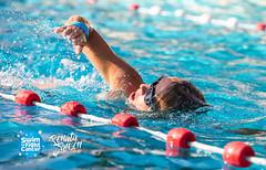 RJ8-8-STFC-89043 (HaarlemSwimtoFightCancer) Tags: joostreinse actie clinicreigers houtvaart sport sro swimtofightcancer training zwemmen