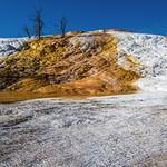 Mammoth Springs thumbnail