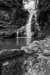 Hareshaw Linn 3 (digiphill) Tags: bellingham hareshawlinn naturereserve northeast northumberland northumberlandnationalpark sssi waterfall carboniferous beautifulearth