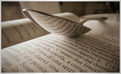 Words... (sigmaser) Tags: book words light relax reading