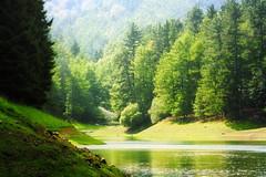 Paraiso escondido (arbioi) Tags: bosque canon domiko domico eos40d euskalherria embalse agiña paisaje bihanditz lago montaña montañas navarra nafarroa naturaleza agua lesaka lesaca
