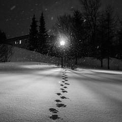 Step way (Lionelcolomb) Tags: saintefamille québec canada ca step pas way track snow neige winter hiver night nuit lampadaire lumiere light withe blanc noir black blackwhite bw noirblanc noiretblanc exterieur outdoor carre square move canon 1200d sigma adobe apple