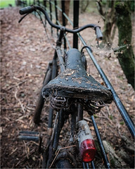 Abandoned bicycle. (David M:) Tags: bicycle bike neglect rust decay fence rustic old vintage retro