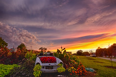 Cry your eyes out (Kansas Poetry (Patrick)) Tags: sky sunset color flowers kansas lawrencekansas patrickemerson