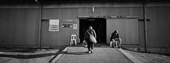Sheep & Wool Show xi (@fotodudenz) Tags: hasselblad xpan film rangefinder wide angle 30mm ultra panorama panoramic 2018 ilford xp2 super bendigo victoria australia street photography australian sheep wool show