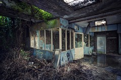 jungle office (in explore August 2018) (Knee Bee) Tags: usineskeleton urbex abandonedfactory industrial decay office
