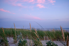 Strand, Sand, Grass (trsl1234) Tags: grass landscape sky sunset sea strand dunes