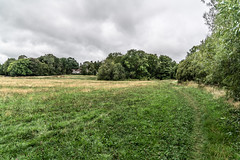BISHOPSMEADOWS WALK SECTION OF THE NORE LINEAR PARK [LENGTH OF WALK ABOUT SIX FIELDS]-143191 (infomatique) Tags: bishopsmeadows kilkenny naturewalk naturetrail sixfields streetsofkilkenny streetsofireland infomatique fotonique august 2018 holiday sony a7riii