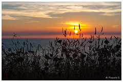 Ombres et lumière (Pascale_seg) Tags: paysage landscape soleil sun sundown sunset sky clouds orange bretagne mer sea france nikon