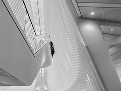 Inside The Occulus (HarrySchue) Tags: newyorkcity oculus architecture blackwhite monchrome abstract nikon d800e sigmalens