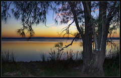 Smokey Basin 2 Spring 2018 (itsallgoodamanda) Tags: amandarainphotography australia australianphotography australianlandscape australiassouthcoast coastallandscape coastal colourfullandscape coastline shoalhaven seascape sea seaside stgeorgesbasin southcoast sunset seascapephotography sky sunsetphotography sanctuarypoint photography photoborder peaceful prettysunset paradisebeach silhouettetrees trees ocean calmocean calmsea calmwater newsouthwales jervisbayphotography jervisbay beach bushfiresmoke spring2018 foreshore landscape landscapephotography landscapecoast oceansunset