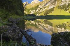 Seealpsee (Giuseppe Caponio) Tags: berge felsen landschaft natur see sonne steine wald wasser weissbad kantonappenzellinnerrhoden schweiz ch
