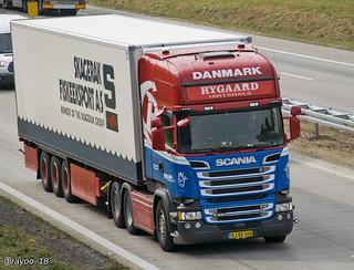Rygaard (DK)