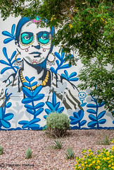 Frida Day of The Dead Wall (Maureen Medina) Tags: maureenmedina artizenimages art arizona dayofthedead diadelosmuertos frida streetart wall painting phoenix