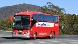 Bus Omnibus (1/3)