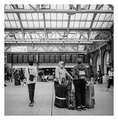 FILM - Departures (fishyfish_arcade) Tags: 6x6 analogphotography bw blackwhite blackandwhite filmphotography filmisnotdead istillshootfilm messikonta52416 monochrome shanghaigp100 zeissikonta analogcamera film folder mediumformat mono expiredfilm railwaystation