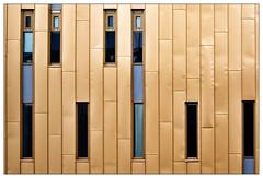 Golden house (frodul) Tags: architektur ausenansicht detail fassade fenster gebäude gebäudekomplex gestaltung konstruktion kurve linie outdoor groningen holland institut nederland netherland umcg golden gelb niederlande