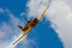 North American SNJ-6 Texan (Spolar Aviation Photography) Tags: north american snj6 texan northamerican naa navy n3639f jeffryshetterly breakevenaircraftresourcing spolaraviationphotography