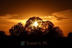 😍😍😍 (Ewers M.) Tags: sonnenuntergang sunset abendstimmung eveningtime natur nature unterwegs ontheway canon canoneos1300d
