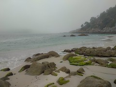 Praia da Nosa señora,Illas Cíes (DAVID MARCHENA) Tags: green waves water seascape sea see spain ocean beach dramaticlandscape landscapes fog coast colors calm atlanticocean galicia island light bruma peace shore nature