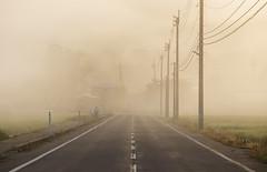 2965 (Keiichi T) Tags: people canon light eos 人 sunrise 村 日本 road haze 靄 architecture 朝 道 morning 建物 village 6d japan 光