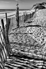 Les Ganivelles de la gare de Maumusson (Fabrice Denis Photography) Tags: seascapephotography france noiretblanc bwphotography charentemaritime coastalphotography sainttrojanlesbains monochromephotography seascapes sea nouvelleaquitaine plagedegatseau beachphotography beach ocean blackandwhitephotography monochrome blackandwhitephotos coastal oceanphotography blackandwhite plage seascapephotographer blackandwhitephotographer seascapephotos iledoléron fr