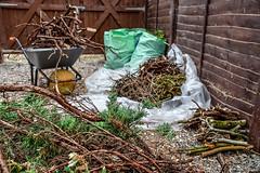 249/365 - Vegetable (Garden Waste Recycling Area) (Nikki M-F) Tags: garden waste recycling wood wales uk