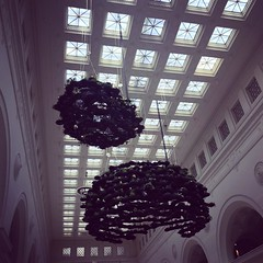 Field Museum Ceiling - 2 (booboo_babies) Tags: fieldmuseum chicago museum greenery architecture window ceiling windows