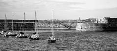 All lined up (JmiaJ) Tags: ardspeninsula coast coastal countydown donaghadee northernireland seaside