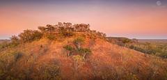 Hilltop Sunrise (jacciingham) Tags: mesa tabletop sunrise dawn snappygum spinifex hills scottcreek station katherine nt australia outback