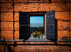 Breaking the wall view (Janne Räkköläinen) Tags: porvoo finland suomi balcony flowers wall brick brickwall window city cityview citylife cityviews streetphotographing streetview snapshot old building oldtown oldcity urban amateur amateurphotography amateurphotographing cano canon canon6d canonphotography canonphotographing ef24105l lonely oldbuilding