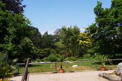 Botanischer Garten der Stadt Linz (Morgentor / Morning Gate) Tags: botanischer garten linz österreich