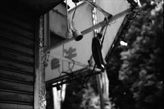 テント (frenchvalve) Tags: テント 庇 film analog 35mm monochrome bnw rangefinder