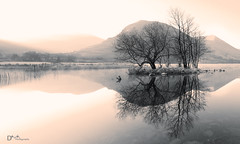 Morning Mists at Brothers Water (Dave Massey Photography) Tags: brotherswater lakedistrict cumbria