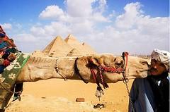 Tours cortos por El Cairo 4 días / 3 noches (Cairo Day Tours) Tags: paquetes cortos en egipto turisticos todo incluido paquete turistico tours por el cairo 4 días 3 noches