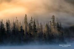 Misty morning on Stanley Lake, Idaho (Marc Haegeman Photography) Tags: mist fog idaho morning sunrise serene marchaegemanphotography nikon landscapephotography landscapephotographybymarchaegeman sawtooths trees lake stanleylake nature clouds nikond750 usa americanwest