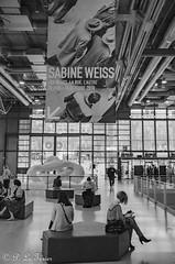 Hommage à Sabine Weiss (letexierpatrick) Tags: noiretblanc noir blanc noirblanc black white bw blackandwhite monochrome exposition paris beaubourg france europe explore